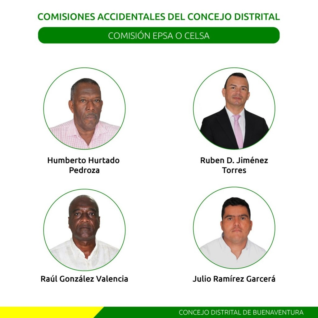 Comisiones Accidentales